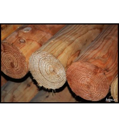 Stolpe Ø12 cm. lærketræ