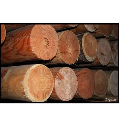Stolpe Ø18 cm. lærketræ